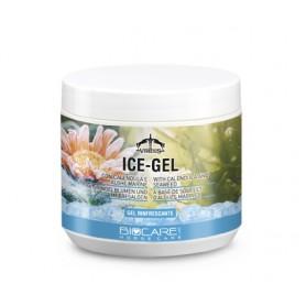 Ice Gel Biocare