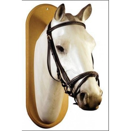 Briglia Equestro modello Deco